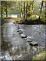 NY2514 : Ford and stepping stones at Roshwaite by Oliver Dixon