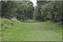 TQ5244 : Footpath, Penshurst Park by N Chadwick