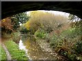 SJ8764 : The Macclesfield Canal by Graham Hogg