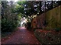 SZ0891 : Bournemouth: footpath B16 heads down to Braidley Road by Chris Downer