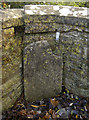 ST8054 : Boundary Stone on the Frome bridge by Neil Owen