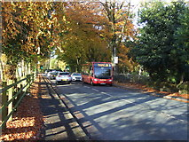 SJ7886 : Bus stop on Hale Road (A538) by JThomas
