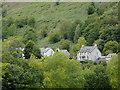 SJ1443 : Housing and woodland near Glyndyfrdwy, Denbighshire by Roger  Kidd