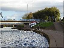 SX9192 : Authorised graffiti on Exe Bridges, Exeter by David Smith