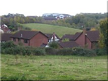 SX9491 : Houses in Parkland Drive, Exeter by David Smith