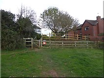 SX9491 : Kissing gate and steps; access to Ludwell Valley Park by David Smith