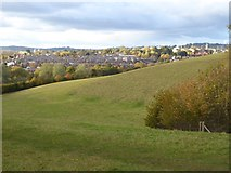 SX9490 : Grassland in Ludwell Valley Park and view of Exeter by David Smith