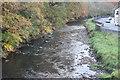 ST1792 : River Sirhowy, Station Avenue, Ynysddu by M J Roscoe