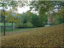 SK0573 : Ornamental lake, Pavilion Gardens by Carroll Pierce