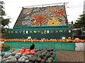 SU9608 : Cat guarding the 2016 Slindon Pumpkin Festival by Marathon