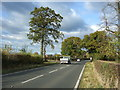 SJ6861 : Middlewich Road (A530) by JThomas