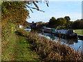 SK3707 : Narrowboats moored along the Ashby Canal by Mat Fascione
