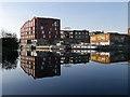 TQ3784 : Former Industrial Premises, River Lee Navigation by David Dixon