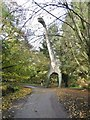 TG1017 : Weston Longville, dinosaur trail c by Mike Faherty