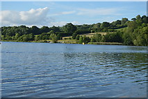 TQ3328 : Ardingly reservoir by N Chadwick