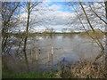 SO8540 : River Severn at 13.51 metres by Des Blenkinsopp