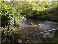 TL1614 : Weir on the River Lea off Cherry Tree Lane by Adrian Cable