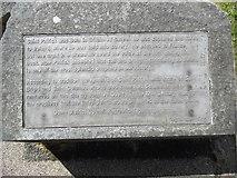 J4844 : Inscription by St Patrick's Grave, Downpatrick by David Hillas