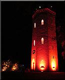 NJ0459 : Nelson Tower in Scarlet by Anne Burgess