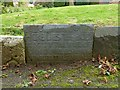 SK7624 : Belvoir Angel headstone, Scalford churchyard by Alan Murray-Rust