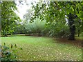 SD4984 : Willow maze, Levens Hall gardens by David Smith