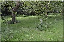 TQ5345 : Footpath sign, Penshurst Park by N Chadwick