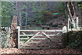 SO1604 : Entrance to Upper Sirhowy Valley Community Woodlands by M J Roscoe