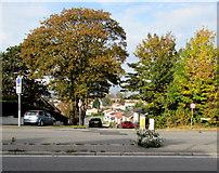 ST3090 : Autumn colours, Westfield Drive, Malpas, Newport by Jaggery