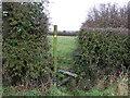 SJ4863 : Footpath off Cow Lane by JThomas