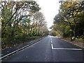 TQ4470 : Bromley Road crossing Chislehurst Common by Marathon
