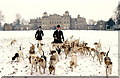 ST8083 : Beaufort Hounds, Badminton, Gloucestershire 1994 by Ray Bird