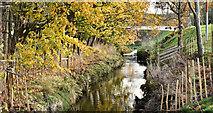 J3673 : The Knock River, Belfast - November 2016(2) by Albert Bridge