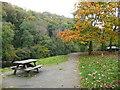 SN1942 : Picnic table at the riverside car park, Cilgerran by Humphrey Bolton