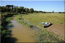 TQ5203 : Cuckmere River by Philip Halling