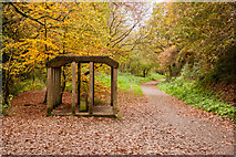 SX0567 : Shelter on the Camel Trail by Guy Wareham