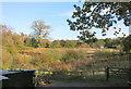 SU7892 : Overgrown field, Cadmore End by Des Blenkinsopp