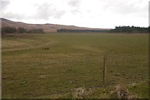 NR3657 : Improved ground by Richard Webb