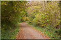SX0167 : Camel Trail by Guy Wareham