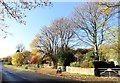 NZ2458 : Bottom of Banesley Lane by Robert Graham