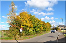 ST8180 : Luckington Rd, Acton Turville, Gloucestershire 2015 by Ray Bird