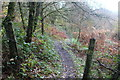 ST1793 : Sirhowy Valley Walk above Wyllie by M J Roscoe