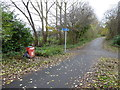 SJ8446 : Newcastle-under-Lyme: path junction on cycleway by Jonathan Hutchins