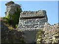TQ6404 : Pillbox in Pevensey Castle by Philip Halling