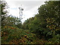 SO4808 : Communications mast on Craig-y-dorth by Peter Wood