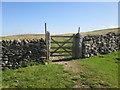 SD8183 : The  gate  at  Gavel  Gap by Martin Dawes