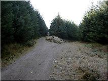 S8457 : Track Junction by kevin higgins