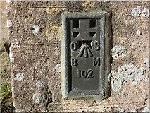 ST6390 : Ordnance Survey Flush Bracket 102 by Peter Wood