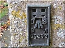 ST8080 : Ordnance Survey Flush Bracket S9999 by Peter Wood