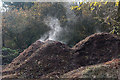 TQ2997 : Steaming Compost, Trent Park, Enfield by Christine Matthews