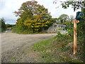 SN0314 : A walk to Slebech Old Church 7 by Humphrey Bolton